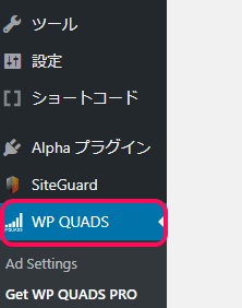 WP QUADS設定アドセンス広告を自動表示